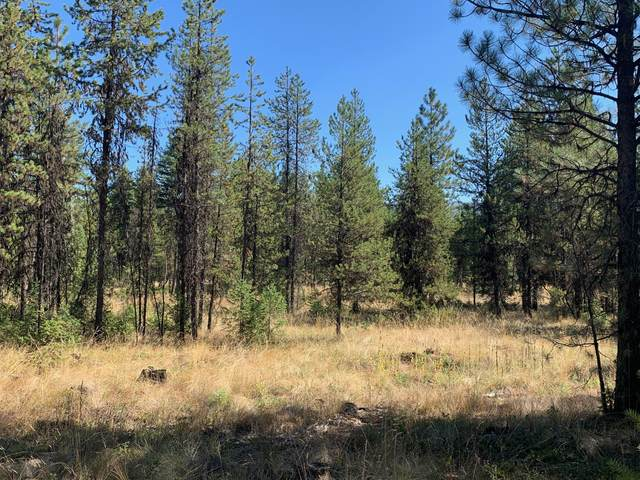Lot 18 Pleasant Valley Road, Libby, MT 59923 (MLS #22004911) :: Montana Life Real Estate