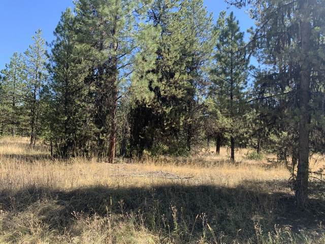 Lot 19 Pleasant Valley Road, Libby, MT 59923 (MLS #22004912) :: Montana Life Real Estate