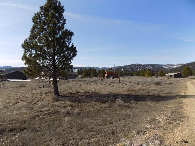 4375 Salmon Lane, Lincoln, MT 59639 (MLS #22005011) :: Andy O Realty Group