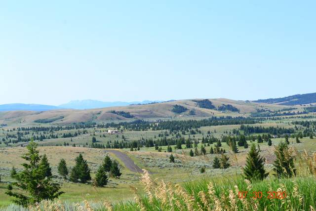 127 Panorama Drive, White Sulphur Springs, MT 59645 (MLS #22008741) :: Andy O Realty Group