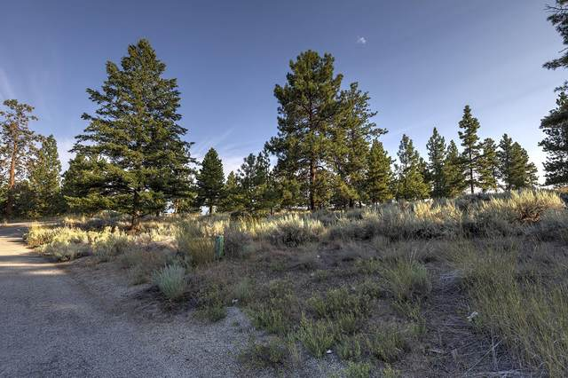 Lot 83 Mascot Trail, Hamilton, MT 59840 (MLS #22010693) :: Whitefish Escapes Realty