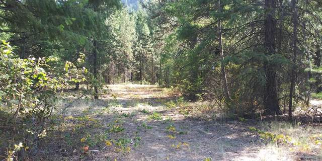 Nhn Frontier River Sites Lot 8, Saint Regis, MT 59866 (MLS #22012697) :: Andy O Realty Group