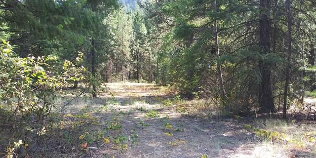 Nhn Frontier River Sites Lot 8, Saint Regis, MT 59866 (MLS #22012697) :: Montana Life Real Estate