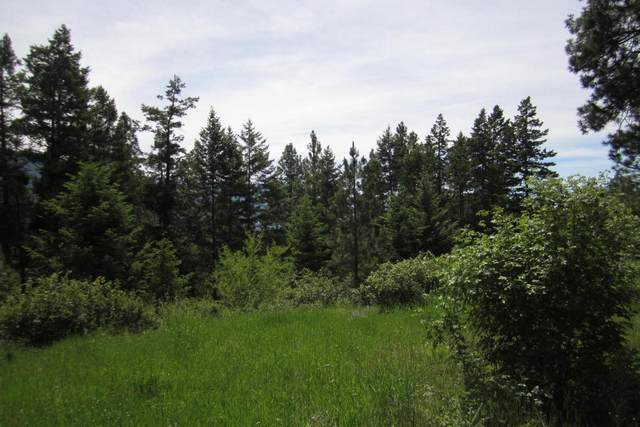 33310 Lakeview Drive, Bigfork, MT 59911 (MLS #22014888) :: Andy O Realty Group