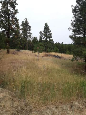 78 Forest Park Drive, Clancy, MT 59634 (MLS #22015439) :: Andy O Realty Group