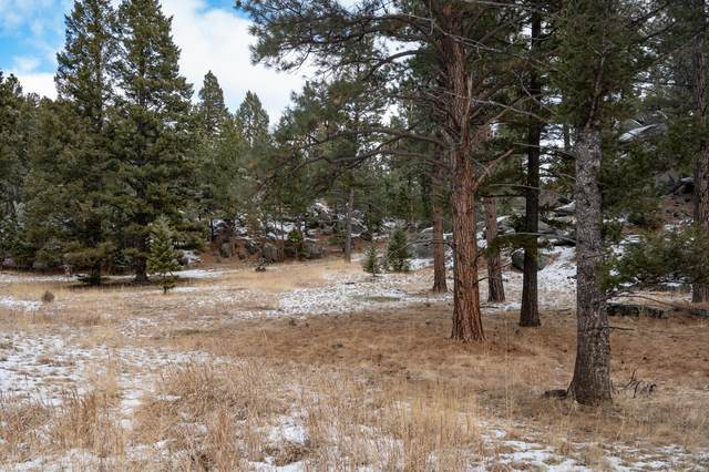 2 Bear Court, Clancy, MT 59634 (MLS #22100828) :: Andy O Realty Group