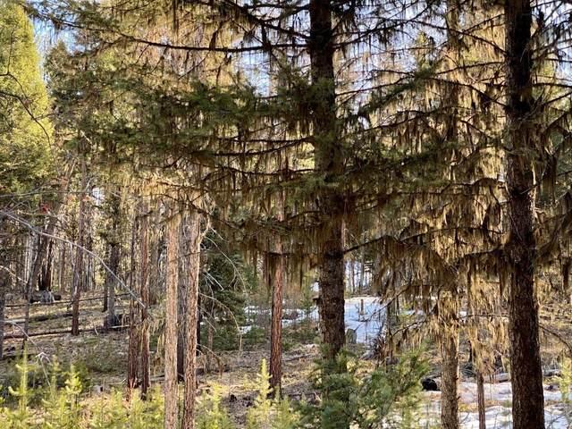 256 Pyramid Loop, Seeley Lake, MT 59868 (MLS #22104192) :: Montana Life Real Estate