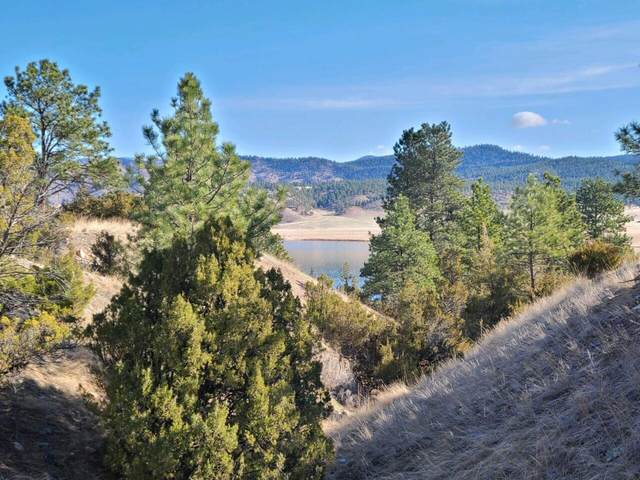 5334 Castles Road, Helena, MT 59602 (MLS #22104787) :: Whitefish Escapes Realty