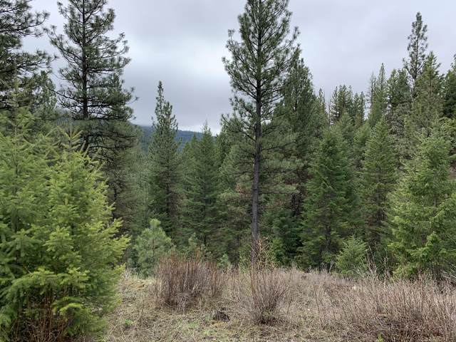 Parcel E Petty Creek Road, Alberton, MT 59820 (MLS #22106123) :: Peak Property Advisors