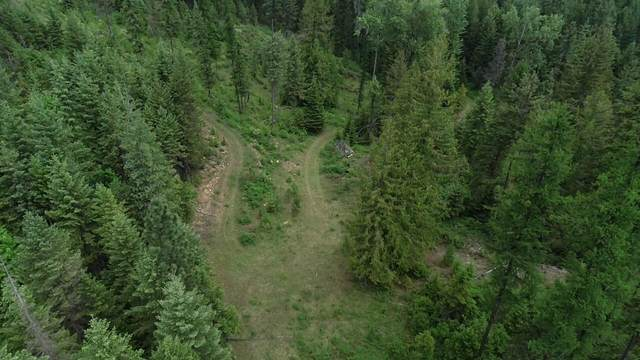 Nhn Forest Lane, Trout Creek, MT 59874 (MLS #22108560) :: Peak Property Advisors