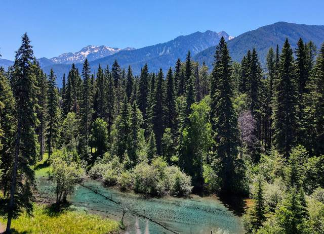 Nhn Hwy  2 E, West Glacier, MT 59936 (MLS #22110099) :: Whitefish Escapes Realty
