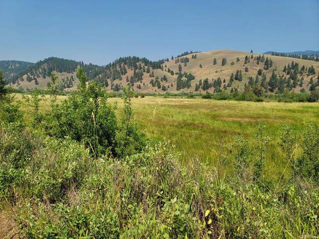 Tbd Tract 1 Wineglass Grazing, Helmville, MT 59843 (MLS #22112066) :: Whitefish Escapes Realty