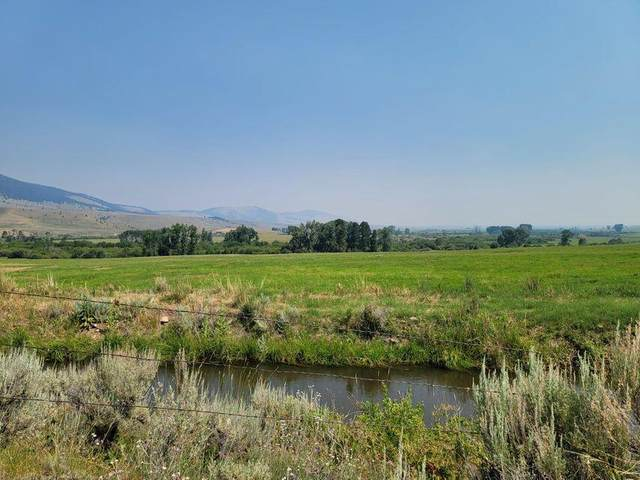 Tbd Tract 2 School House Meadow, Helmville, MT 59843 (MLS #22112067) :: Whitefish Escapes Realty