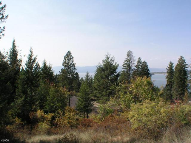 267 Whisper Ridge Drive, Bigfork, MT 59911 (MLS #316802) :: Andy O Realty Group