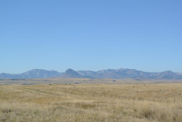 LOT 241 Willow Creek Subdivision, Augusta, MT 59410 (MLS #3180292) :: Brett Kelly Group, Performance Real Estate