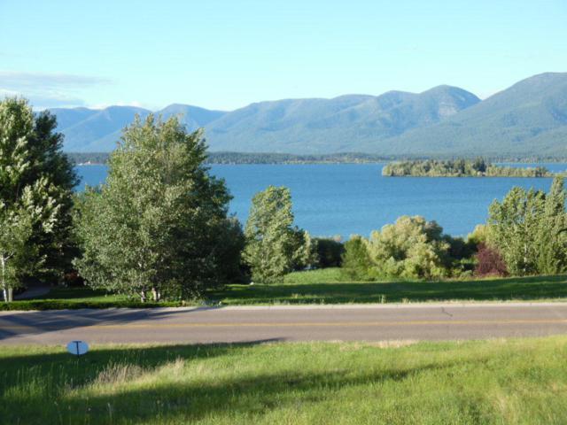 Nhn Montana Landing, Polson, MT 59860 (MLS #327277) :: Loft Real Estate Team