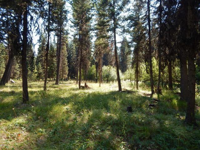 117 Rainbow Drive, Seeley Lake, MT 59868 (MLS #21608034) :: Andy O Realty Group