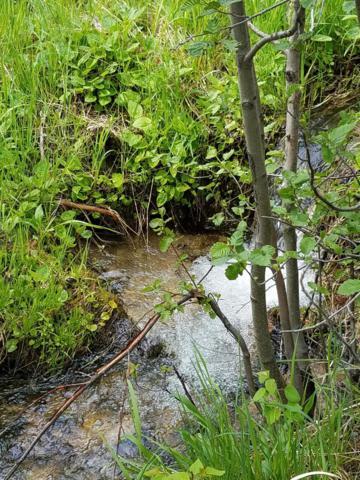 Lot 32a Clear Creek Sub, Anaconda, MT 59711 (MLS #21805028) :: Andy O Realty Group