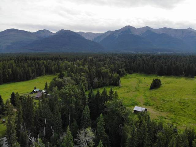720 Cooney Creek Road, Condon, MT 59826 (MLS #22002035) :: Andy O Realty Group