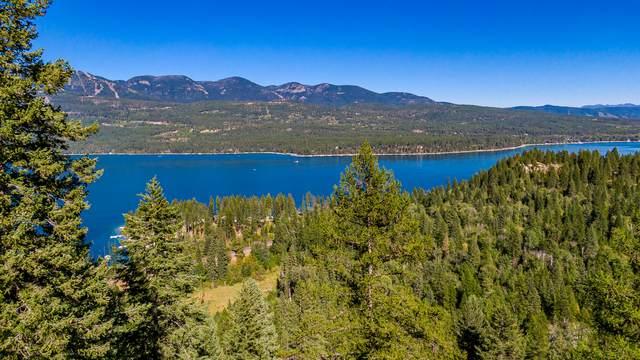 2927 Osprey Lane, Whitefish, MT 59937 (MLS #22005860) :: Montana Life Real Estate