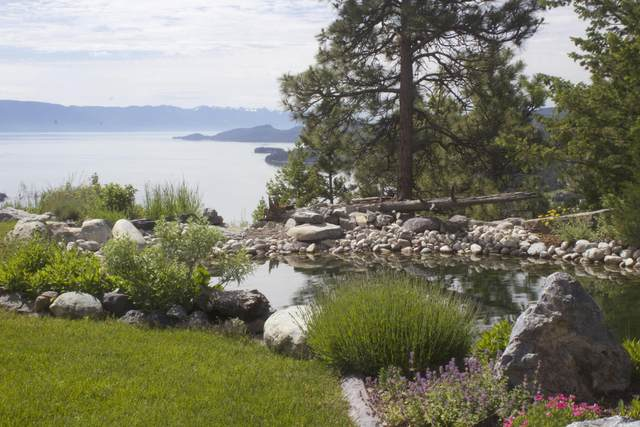 1234 Eagle Trail, Somers, MT 59932 (MLS #22006308) :: Performance Real Estate