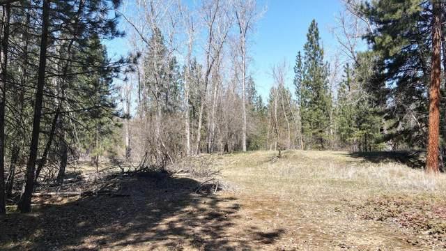 4820 Bitterroot Drive, Missoula, MT 59804 (MLS #22105510) :: Peak Property Advisors