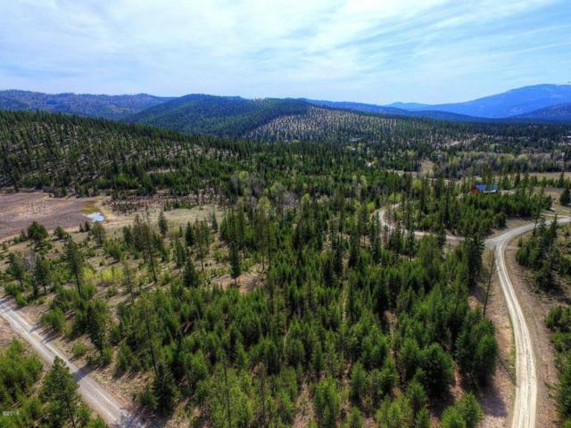 366 Hodge Creek Road N, Kila, MT 59920 (MLS #302548) :: Loft Real Estate Team
