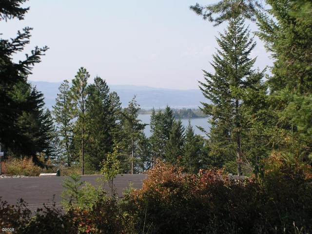 291 Whisper Ridge Drive, Bigfork, MT 59911 (MLS #316799) :: Performance Real Estate