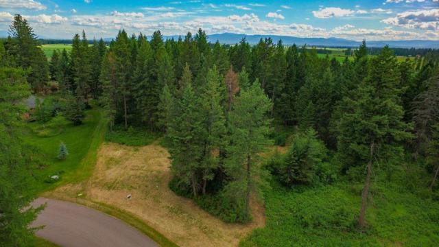 47 Wood Ridge Drive, Columbia Falls, MT 59912 (MLS #21707615) :: Performance Real Estate
