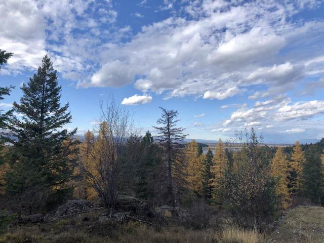 1193 Whispering Rock Road Lot 1, Bigfork, MT 59911 (MLS #21710124) :: Andy O Realty Group