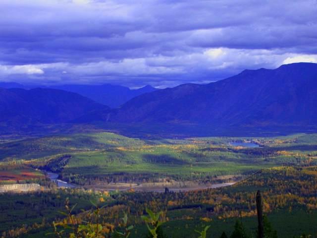 Nhn Blankenship Road, Columbia Falls, MT 59912 (MLS #248701) :: Andy O Realty Group