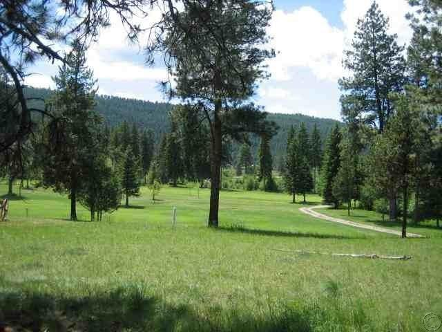 Nhn Golf View Drive, Seeley Lake, MT 59868 (MLS #21604082) :: Loft Real Estate Team