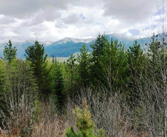 Lot 19 Cabinet Vista Drive, Troy, MT 59935 (MLS #21705911) :: Performance Real Estate