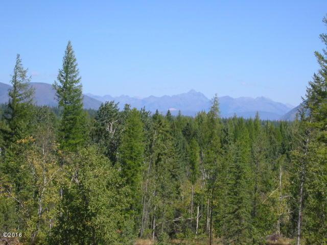 20 Glacier Hills Drive E, Martin City, MT 59926 (MLS #21803417) :: Loft Real Estate Team