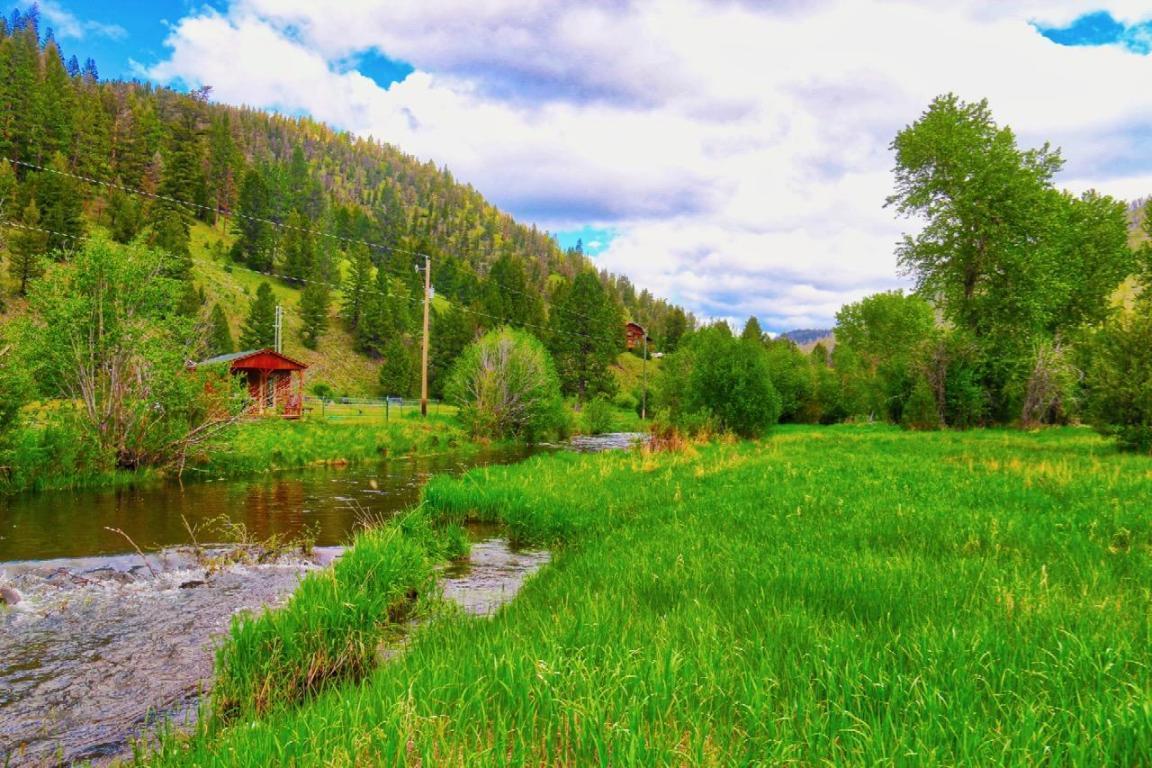 1635 Upper Rock Creek Road - Photo 1
