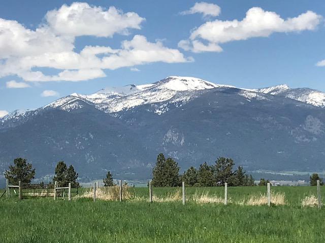 Nhn Groff Lane, Stevensville, MT 59870 (MLS #21805669) :: Loft Real Estate Team