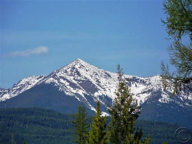 Tbd Beaver Creek Road, Seeley Lake, MT 59868 (MLS #21805944) :: Performance Real Estate