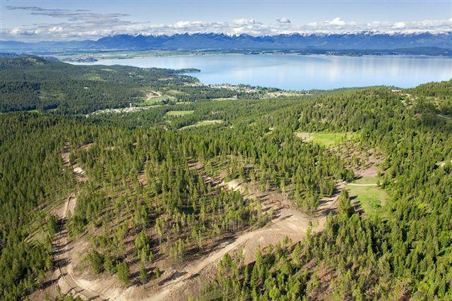 Nhn Blacktail Heights Road, Lakeside, MT 59922 (MLS #21808909) :: Loft Real Estate Team