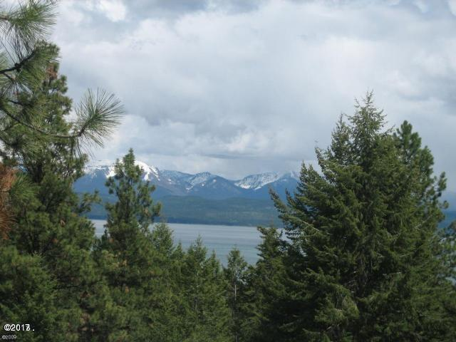 286 Lakeview Drive, Lakeside, MT 59922 (MLS #21811553) :: Brett Kelly Group, Performance Real Estate