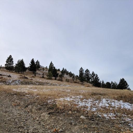 Tbd 2nd Street, Helena, MT 59601 (MLS #21813810) :: Andy O Realty Group