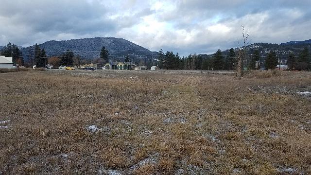 Nhn Lobo Loop, Saint Regis, MT 59866 (MLS #21814591) :: Andy O Realty Group