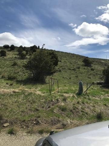 2691 Elk Mountain Rd Road, Garrison, MT 59731 (MLS #21901962) :: Keith Fank Team