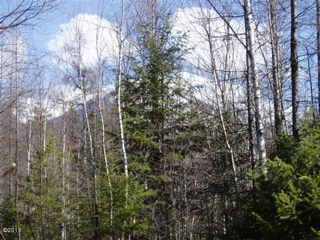 14007 Great Bear Loop, Bigfork, MT 59911 (MLS #21909474) :: Andy O Realty Group