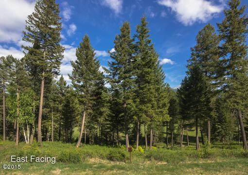 365 Gleneagles Trail, Columbia Falls, MT 59912 (MLS #22002748) :: Andy O Realty Group