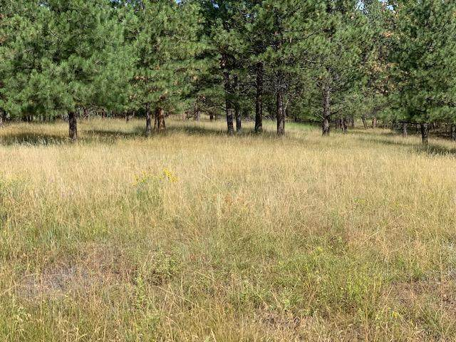 62 Whitetail Lane, Clancy, MT 59634 (MLS #22003952) :: Andy O Realty Group