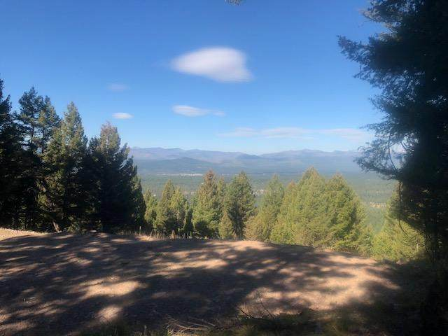 Nhn Summit Drive, Seeley Lake, MT 59868 (MLS #22005775) :: Performance Real Estate