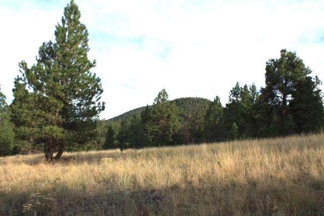 0 Lump Gulch Road, Clancy, MT 59634 (MLS #22006345) :: Andy O Realty Group