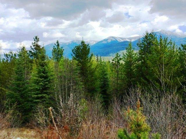 Lot 4 Vernon Drive, Troy, MT 59935 (MLS #22008115) :: Andy O Realty Group