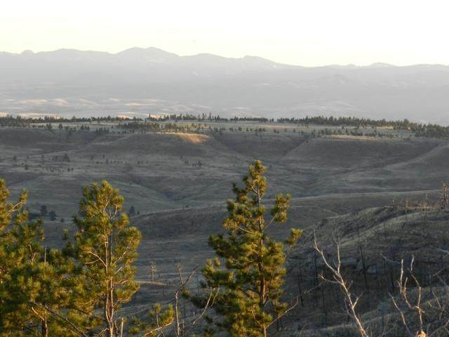 Tbd Dry Basin, Reed Point, MT 59069 (MLS #22008752) :: Dahlquist Realtors