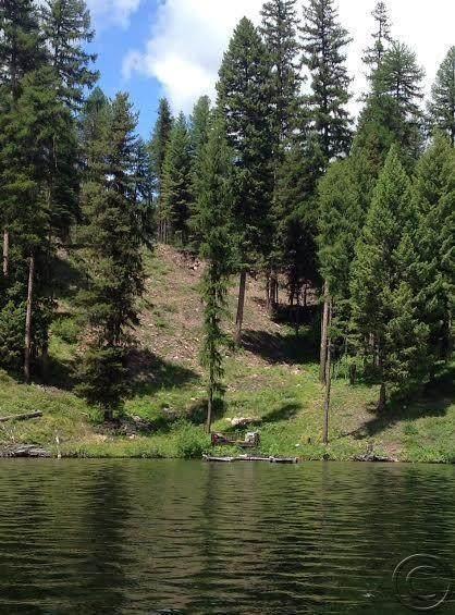 2049 Westlake Way, Seeley Lake, MT 59868 (MLS #22009629) :: Whitefish Escapes Realty